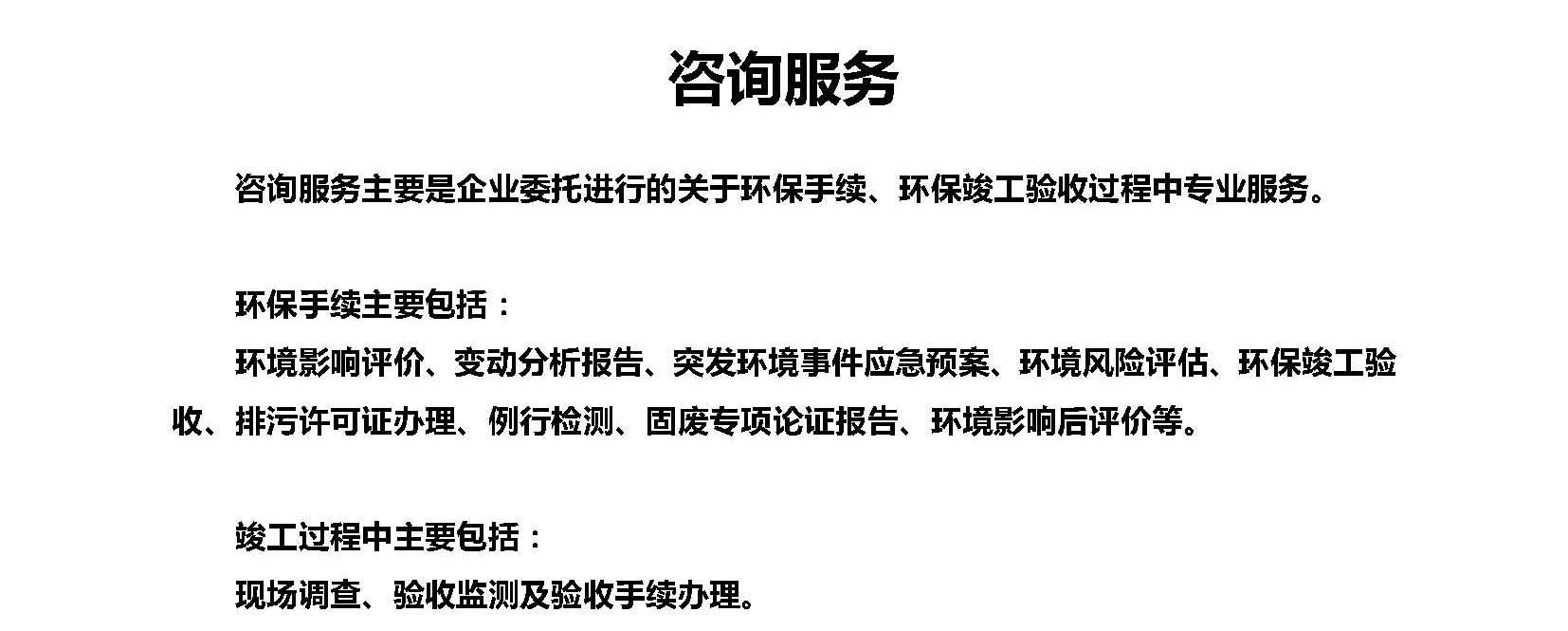 咨询服务 文字材料_页面_1